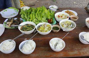 Yem Panha: Organic farm and vegetables