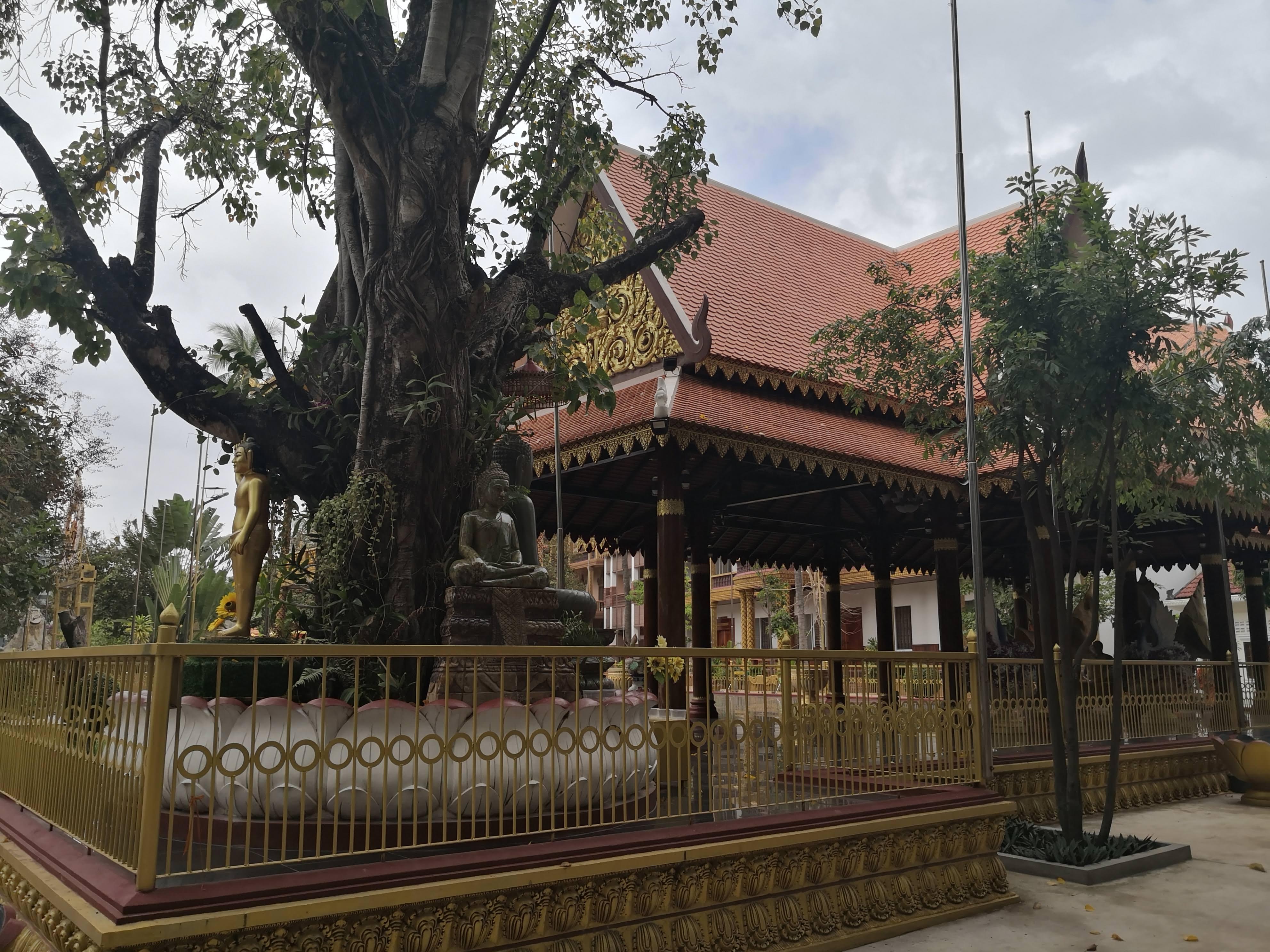 Wat Damnak in Siem Reap